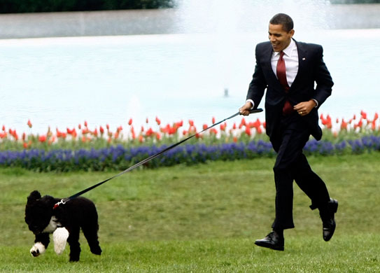 The President Shown Here With His Lapdog Eric Holder