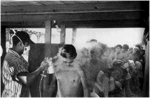 Americans suspected immigrants bore all manner of diseases. DDT did not control diseases.