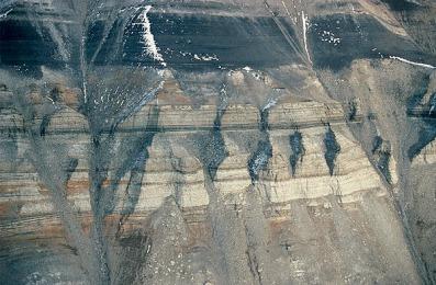 Antarctic Coal Seam