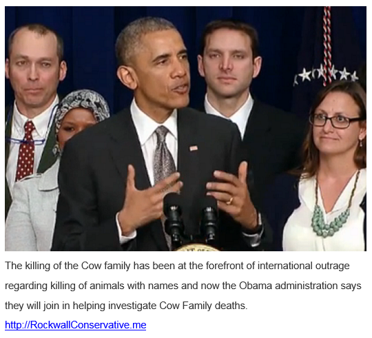 obama admin joins in helping investigate Cow Family deaths