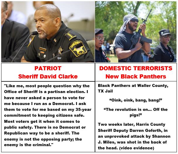 partiotism vs domestic terrorism