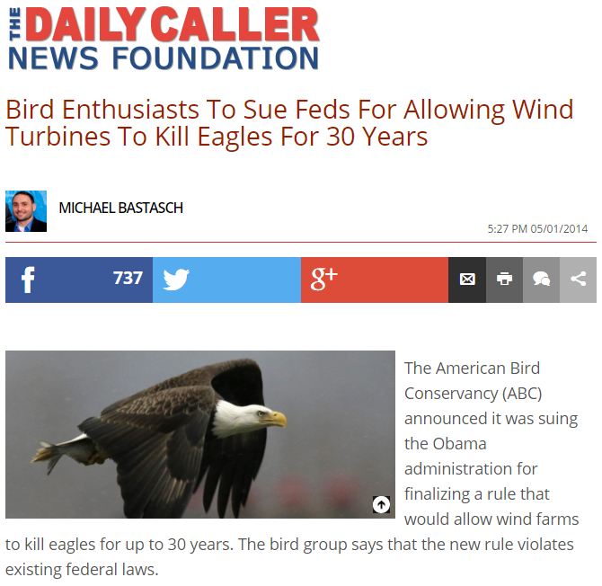 Daily Caller: Bird Enthusiasts To Sue Feds For Allowing Wind Turbines To Kill Eagles For 30 Years