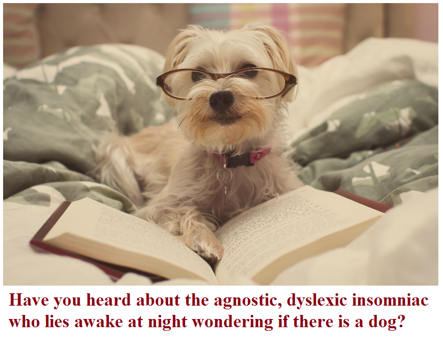 have you heard about the agnostic dyslexic insomniac who lies awake at night wondering if there is a dog.png