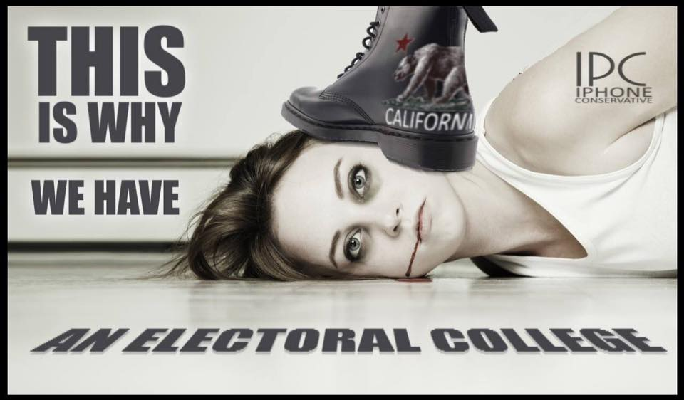 this-is-why-we-have-an-electoral-college