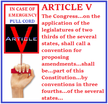 article-v-emergency-pull-cord