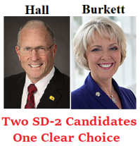 BOB HALL FOR - CINDY BURKETT AGAINST - email graphic