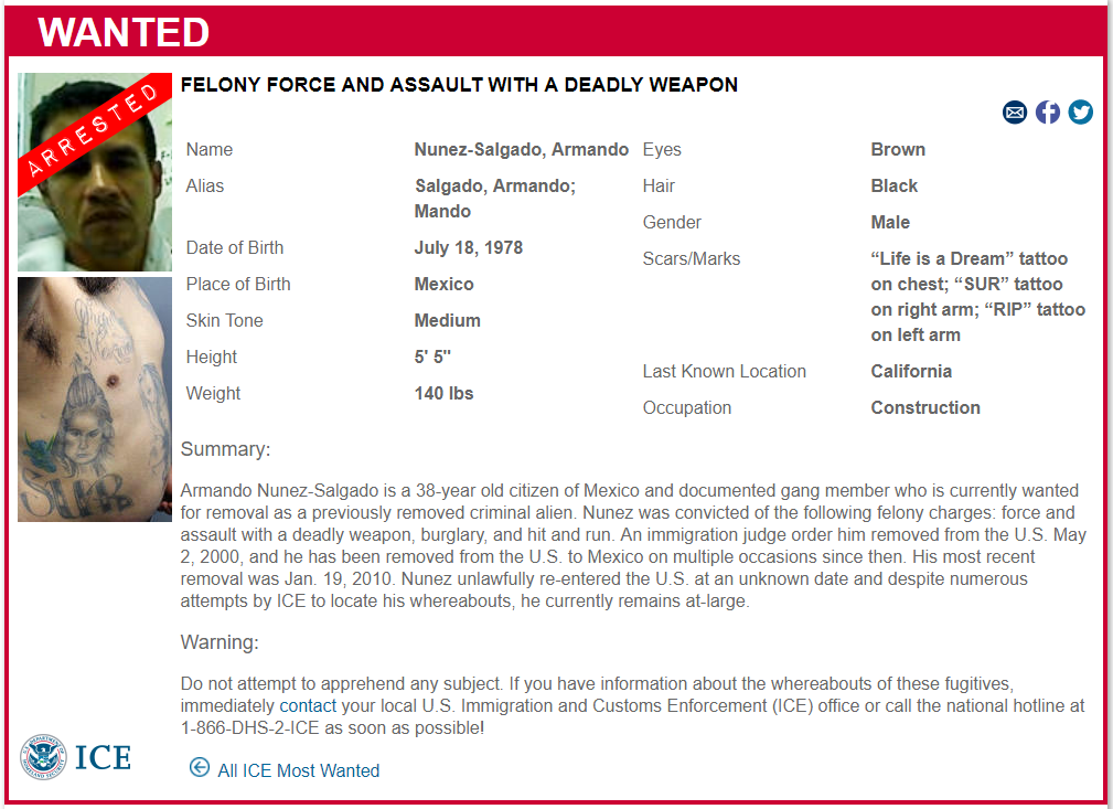 armando nunez-salgado - felony force and assault with a deadly weapon ICE report