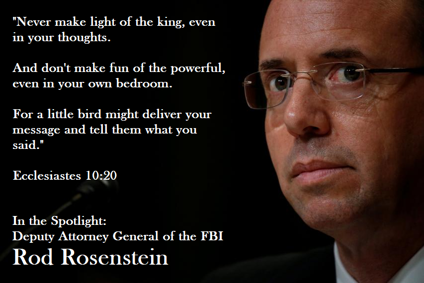 rod rosenstein in the spotlight - a little bird told on him