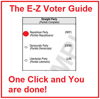 E-Z Voter Guide - small size