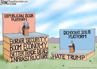 republican platform vs democrat platform 2018